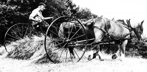 Last Stand Farmer Photo